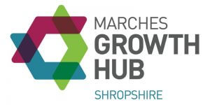 Marches Growth Hub Digital Growth: How to Grow and How to Measure the Growth event